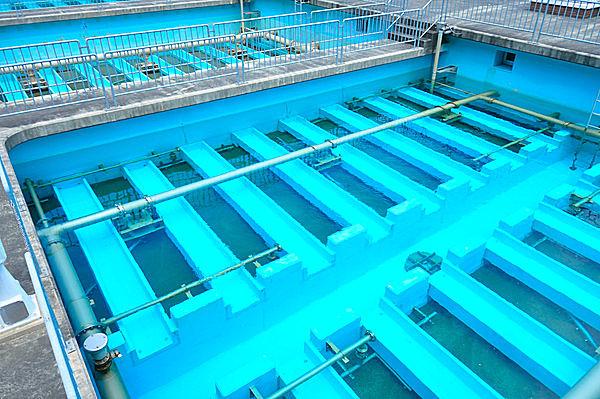 老廃物を除去する「リンパ系」は体内の下水道とも言われる