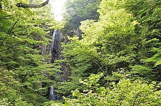 東京・神奈川・埼玉の名瀑でパワーチャージ!〈レジャー特集・2017〉