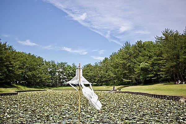 イザナギノミコトが禊を行ったといわれる「みそぎ池」