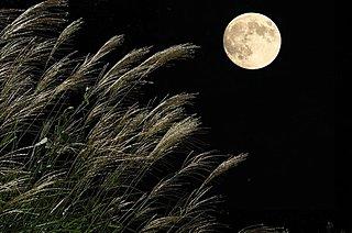 2017年10月4日は「中秋の名月」。今年はなぜ10月?満月とは限らないってホント!?