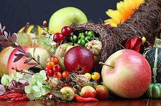 天高く馬肥ゆる秋!さて、きょうのおやつは何にする?大地の栄養がたっぷりです!