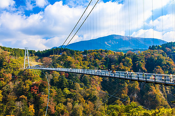 日本一の高さは、まさに天空の散歩道!