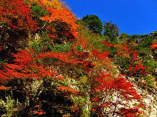 秋の行楽は道の駅へGO!お出かけスポット情報〈千葉県・2|2017〉