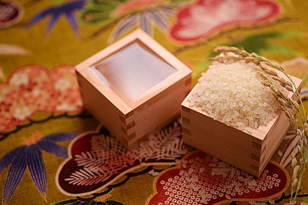 よい水と米、そして「発酵」によりおいしい日本酒に(写真はイメージ)