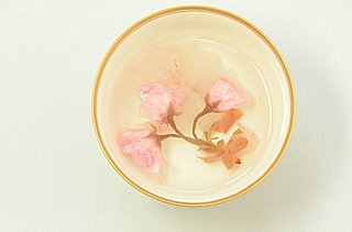 湯の中でふわりと開いて、ほのかに香って、春爛漫。さくら湯で愉しむ、小さなお花見
