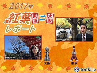 第1回 東京・大阪紅葉レポート2017