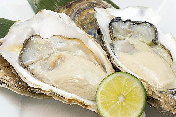 クリーミーで香り豊か、プリプリの身がしまった生食用の牡蠣