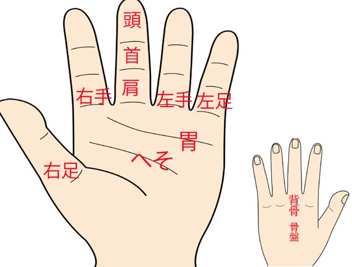 「部分即全体」の手のマッサージをベースにした「指ヨガ」のツボ