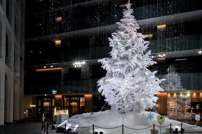 巨大な☆クリスマスツリーを見にいこう!〜東京編|特集2017〜