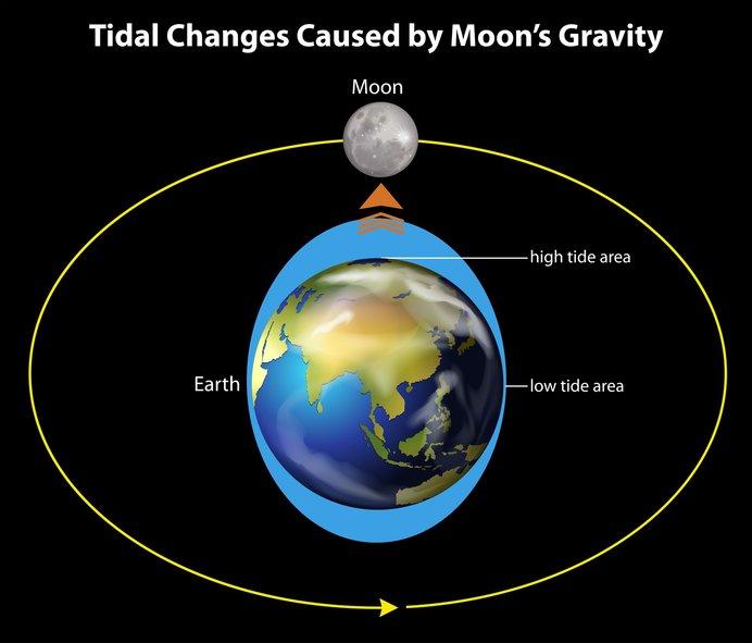 月重力による潮位を表した図。月が地球に接近するスーパームーン時は潮汐(ちょうせき)力が強くなる