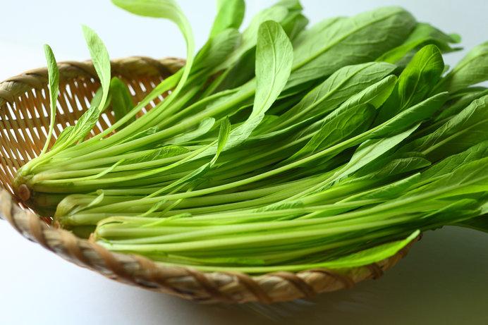 写真の「壬生菜(みぶな)」は、「水菜」の仲間です