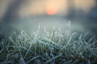 七十二候「水泉動」-厳寒のなか太陽を射る奇妙な神事「オビシャ」とは?