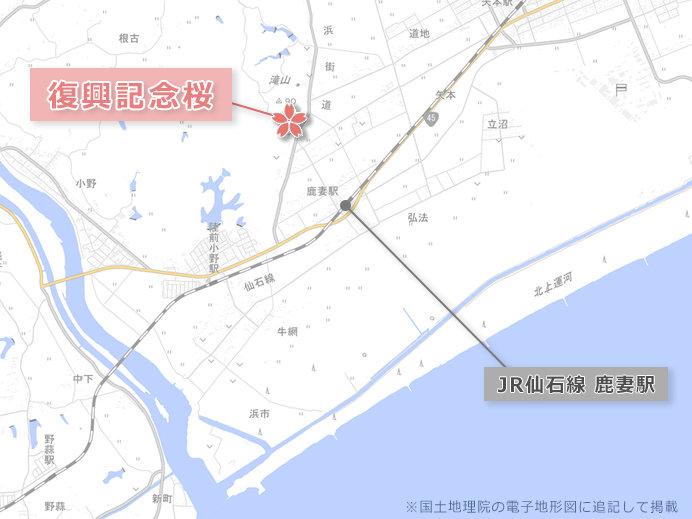 東松島市復興記念桜の地図