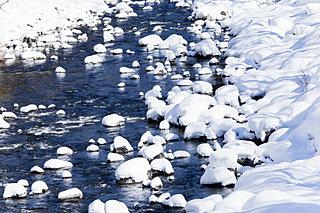 「大寒」は春夏秋冬とめぐってきた最後の二十四節気です