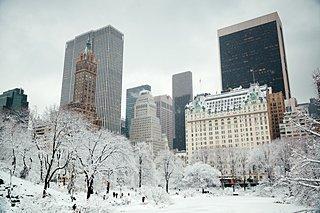 大寒の今だからこそみたい!雪が印象的な映画たち