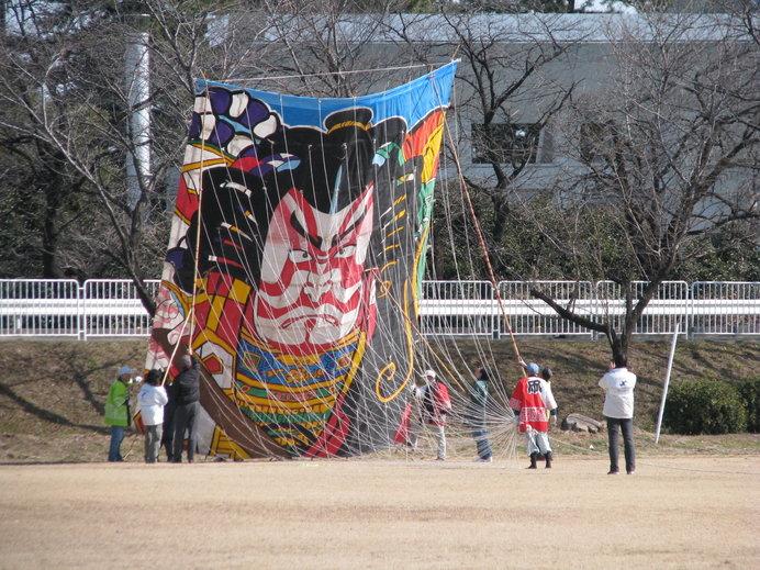 こんなに大きな凧もある?(画像はイメージ)