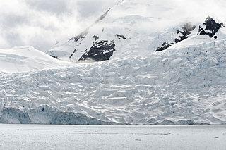 1月29日は「南極の日」。南極では風邪にはかからないその理由