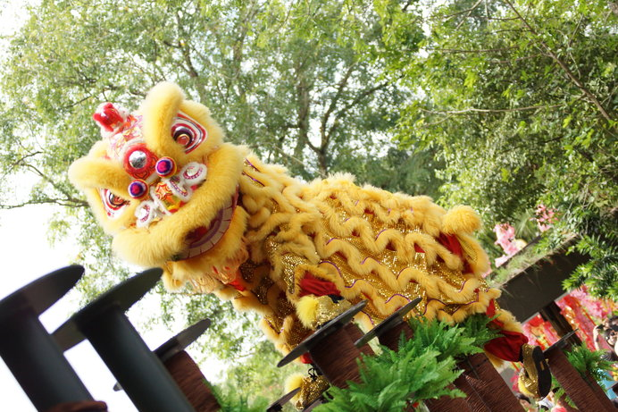 春節イベントでも大人気の中国獅子舞