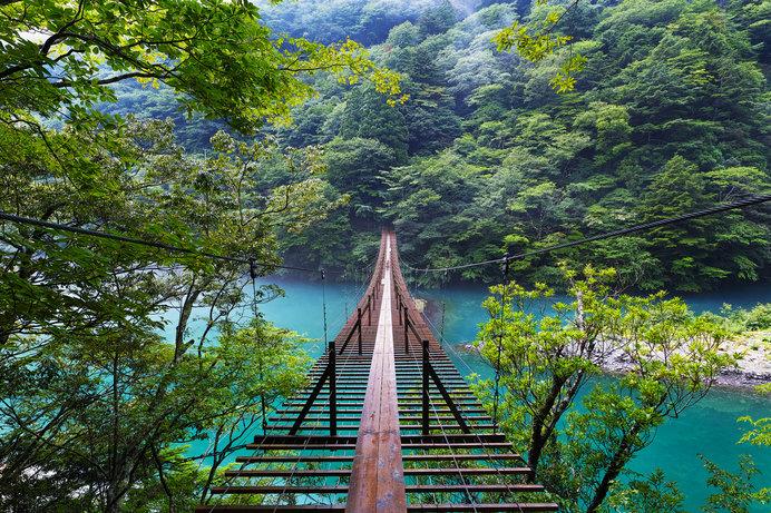 夢の吊橋は神秘的な美しさ。高所恐怖症の方はご用心!