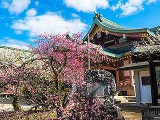 2月25日は梅花祭。天満宮へ出かけよう−俳句歳時記を楽しむ