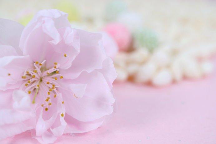 今日から3月「弥生」。春を迎え、水温むころ(tenki.jpサプリ 2018年03 ...