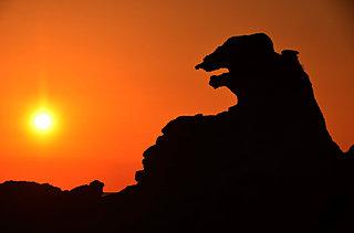 全国に複数ある名所「ゴジラ岩」。最寄りのゴジラ岩はどこ?〈レジャー特集│2018〉