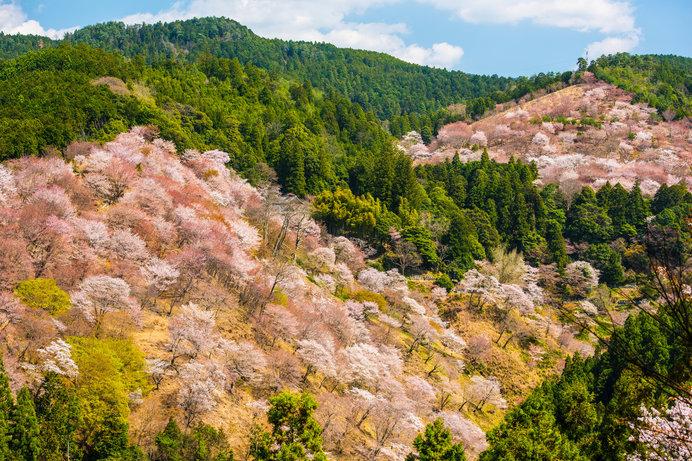 パワースポット・春の登山へGO!〈レジャー特集|西日本編2018〉