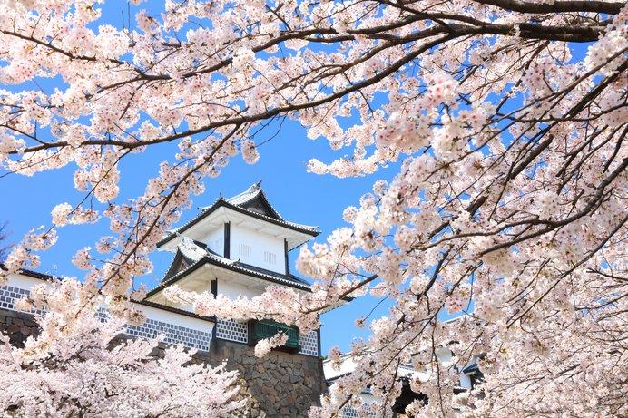 今年の桜に逢いに行こう!北陸のおすすめスポット<桜の名所特集2018|東日本>