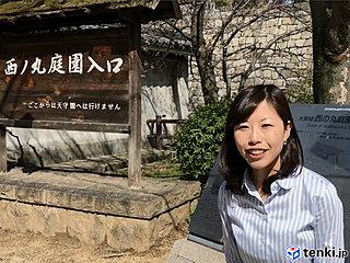 大阪の桜どないな感じ?大阪サクラレポート From西の丸庭園