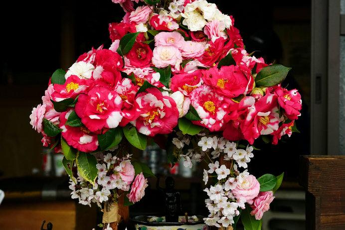 お釈迦様と花祭と甘茶の関係は?―俳句歳時記を楽しむ