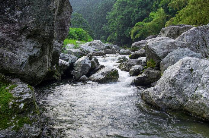 いかにもホタルが好きそうな清流「真国川(まくにがわ)」