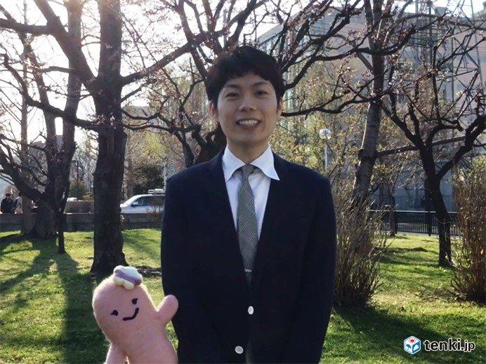 早くも札幌に桜の便り 北海道サクラレポートVol.2