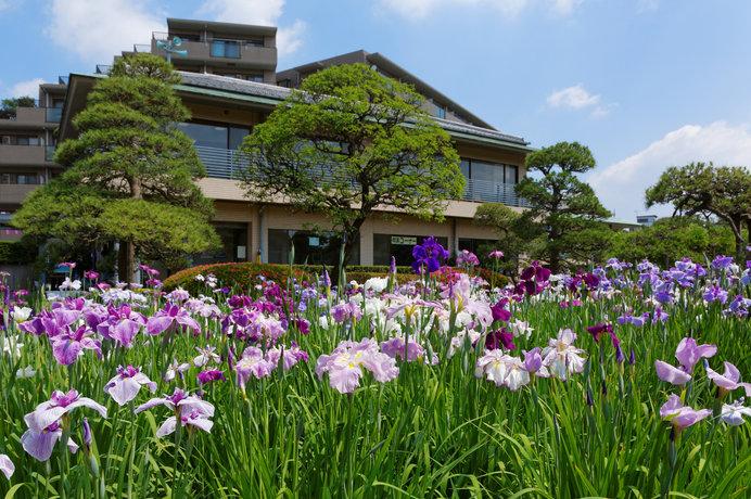 入園無料で200種6000株の花ショウブが楽しめる!