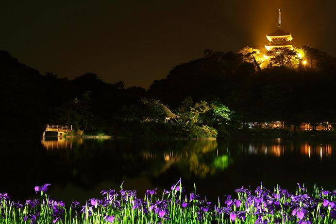 6月3日(日)までは開園時間が延長され、夜間は三重塔などがライトアップされる