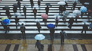 雨粒はしずく型ではない!? 雨女・雨男っている!?  雨の日は「雨トリビア」で楽しもう!