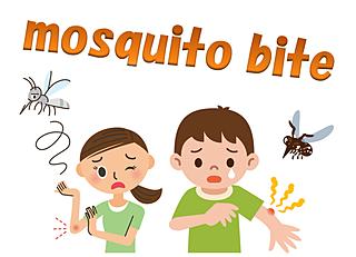 いよいよ本格的な蚊のシーズン──蚊の習性を知って効果的に撃退しよう!