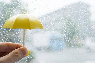 梅雨の時期に欠かせない「傘」の意外と知らない歴史
