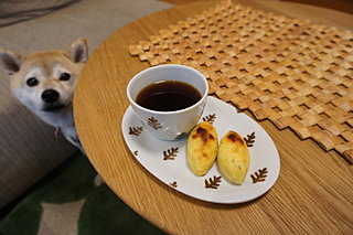 食欲の秋ももうすぐ!愛犬にはサツマイモの手作りおやつを!