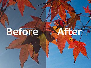 気象予報士カメラマン直伝!スマホで秋の紅葉をキレイに撮るとっておきの方法