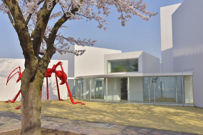 国内外のアーティストによる恒久展示作品によって、敷地全体がアートな空間に!