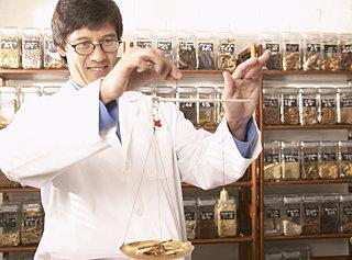 漢方薬を国産に!!輸入頼みの「甘草」を国内で栽培する試み