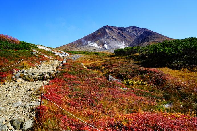 真っ赤に色づく大雪山