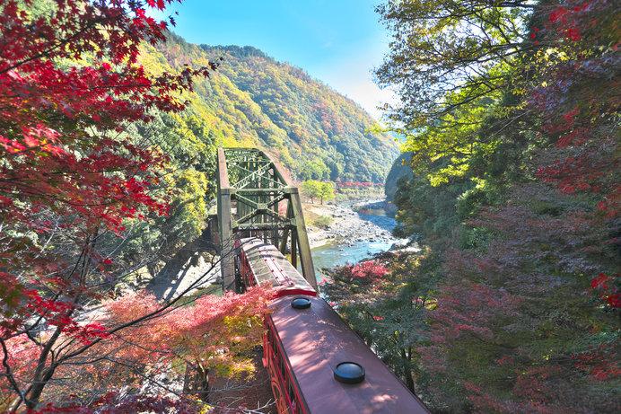 トロッコ列車からの紅葉の眺めは最高♪