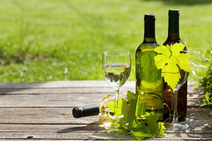 ワイン畑の横で飲むワインは格別(画像はイメージ)