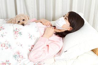 人間だけじゃない!犬も風邪をひくって本当?