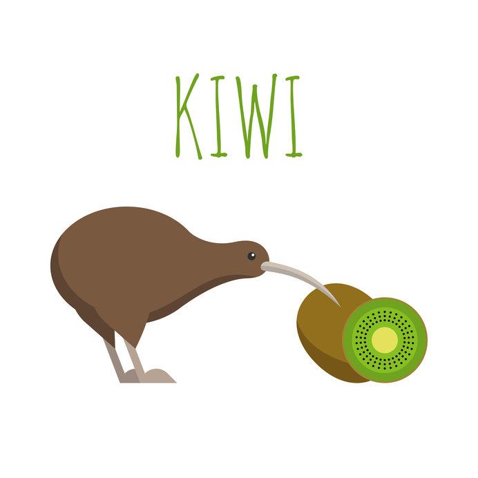 ニュージーランドの国鳥「KIWI」に似ていることが名前の由来