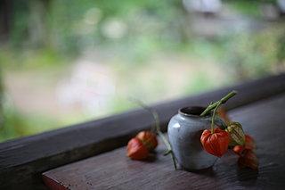 「知って得する季語」冬間近!秋の終わりの季語をおさらいしよう!
