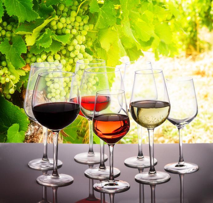 会場では世界のワイン約100種が飲み放題に♪