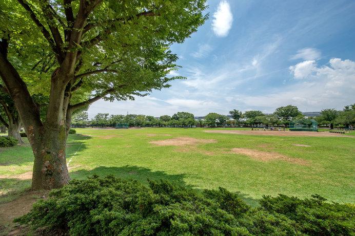 フェスタ当日は、緑豊かな新小岩公園がかつしかグルメと人で大賑わい!