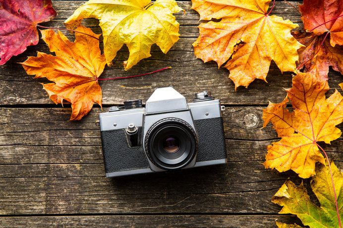芸術の秋―それを超えて美に参与する―福原信三の美学を堪能する!